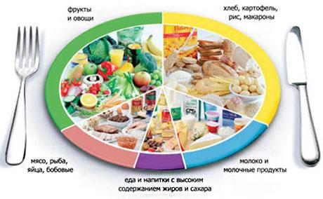 Программа приема пищи для похудения