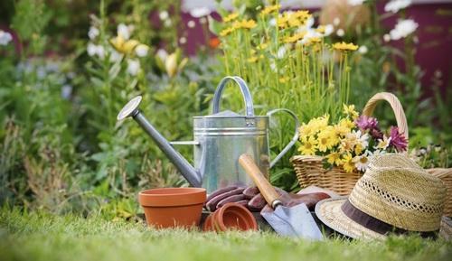 Покупаем садовый инвентарь