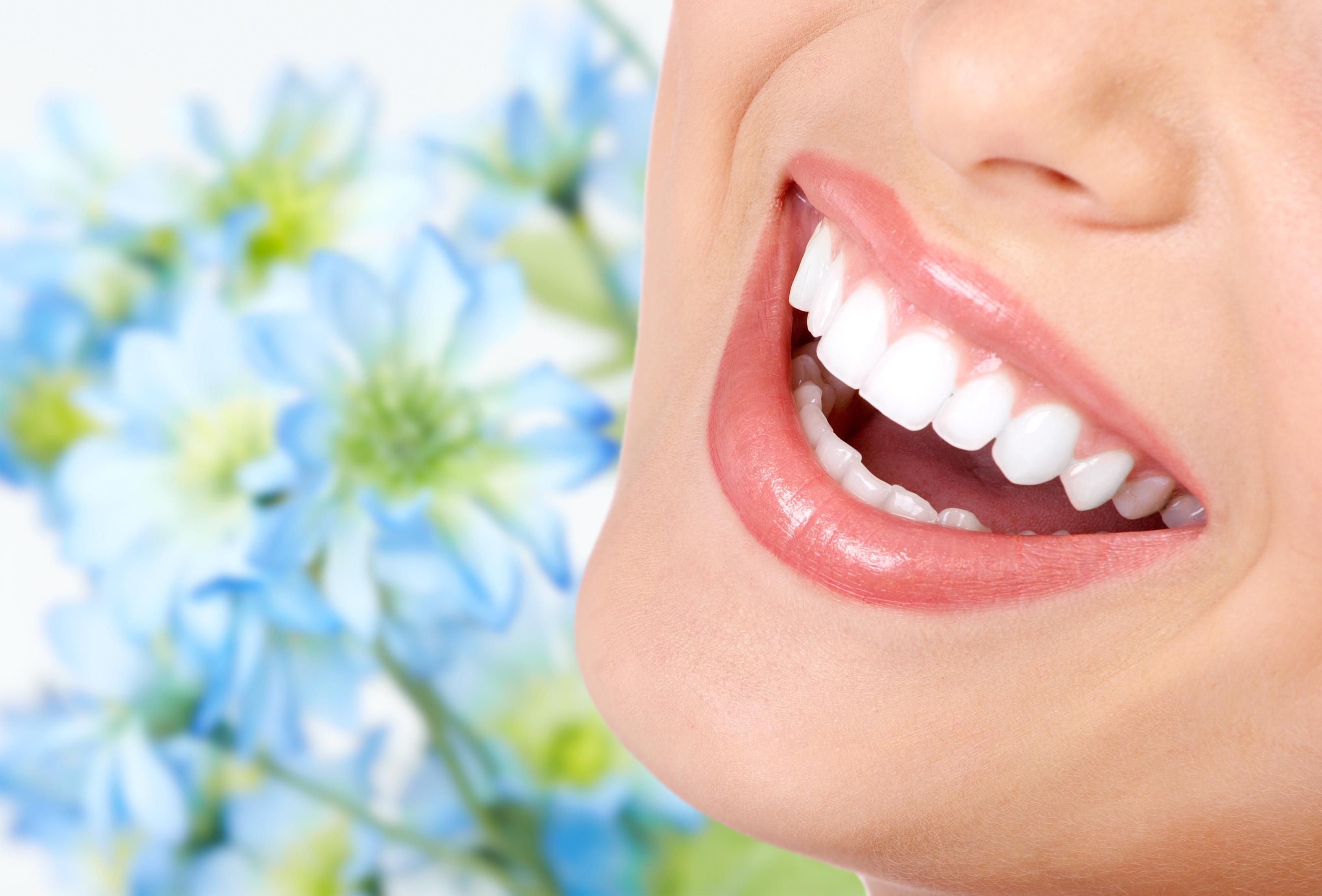 Услуги Центра Европейской стоматологии «Матисс»