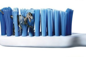Когда заменить зубную щетку?
