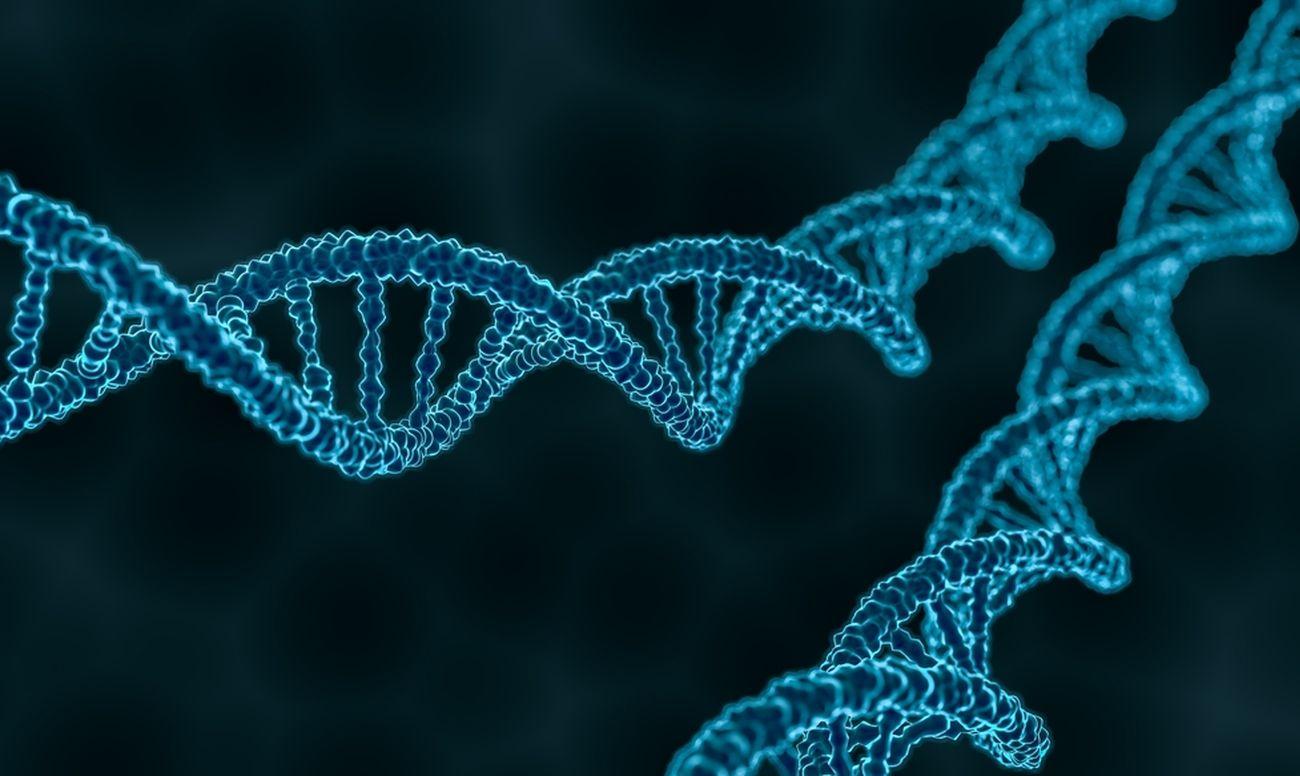 Причина зубного кариеса кроется в генах
