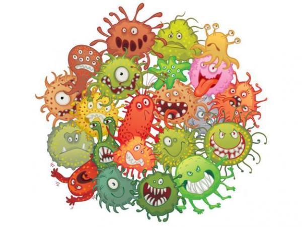 Исследование бактериальных биопленок в перспективе может быть использовано для создания новых стоматологических материалов