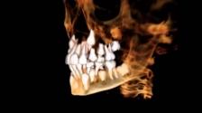 Ученые разработали препарат, способный активировать регенерацию тканей зуба