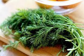 Эти продукты освежают дыхание лучше, чем жевательная резинка