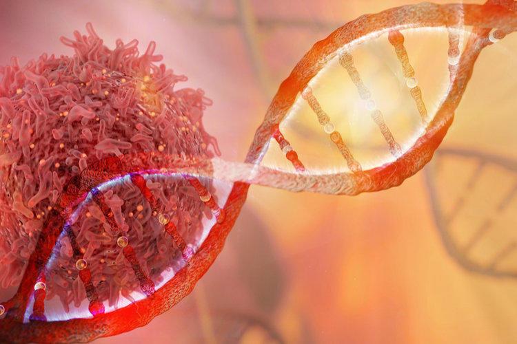 Опасные вещества вызывающие рак. Описание