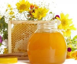 Чеснок, мед, аир и прополис при пародонтозе