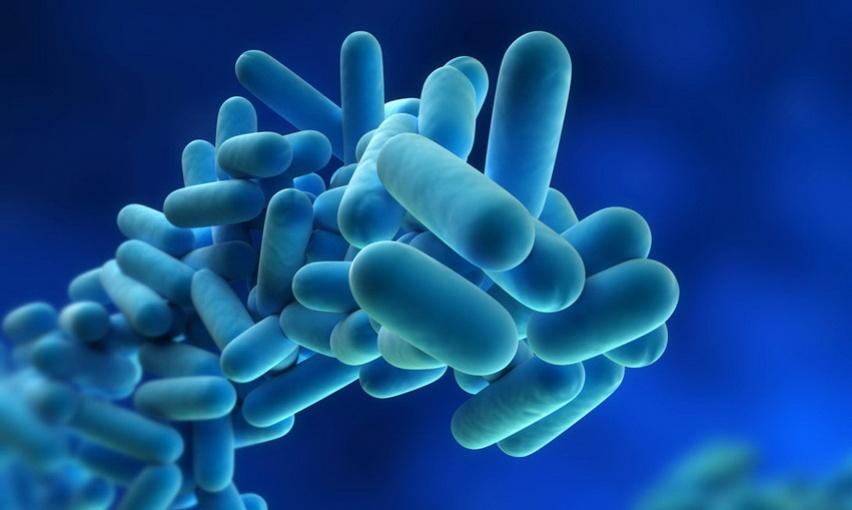 Пробиотики борются с неприятным запахом изо рта
