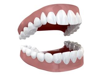 Для чего нужны зубы-моляры и когда они появляются