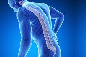 Подавляющее большинство стоматологов жалуется на боли в спине