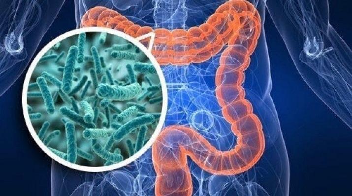 Взаимосвязь между кариесом и раком толстой и прямой кишки