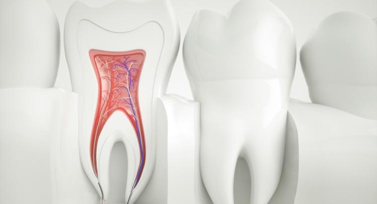 Биоактивные материалы в эндодонтии