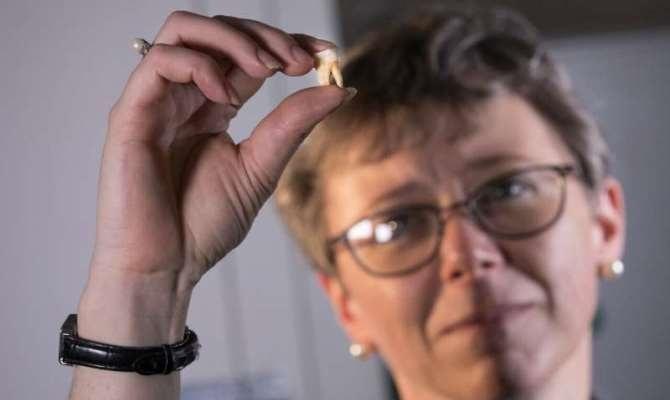 Ученые научились судить о нехватке витаминов в период роста ребенка по слоям дентина первых постоянных зубов