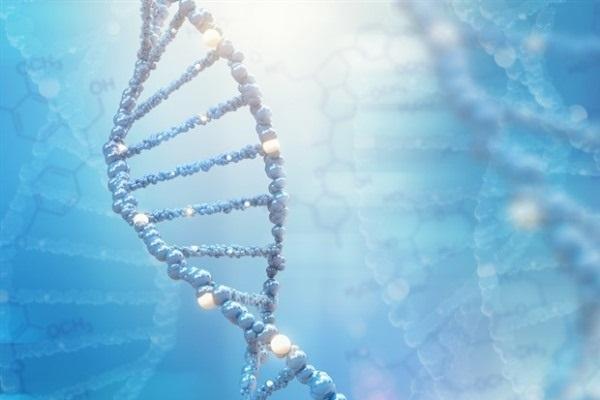 Исследователи описали молекулу, способствующую развитию кариеса